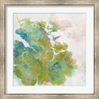 Framed Lichen 1