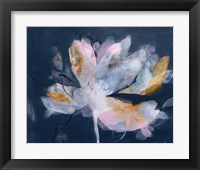 Framed Magnolia Gloaming No. 2