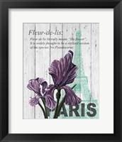 Framed Paris Iris
