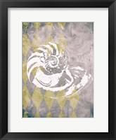 Framed Vintage Harlequin Shell 1