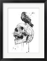 Framed New Skull