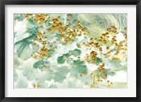 Framed Golden Lady's Mantle