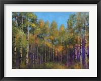 Framed Aspen Autumn