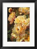 Framed Peonies for Springtime