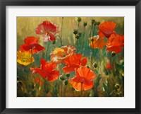 Framed Poppy Fields