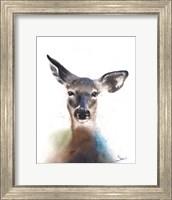 Framed Deer Watercolor