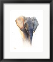 Framed Elephant Watercolor