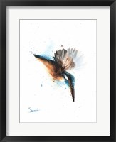 Framed Kingfisher