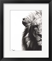 Framed Lion II
