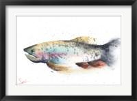 Framed Rainbow Trout