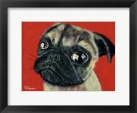 Framed Pugly