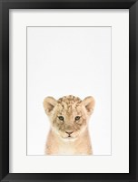 Framed Baby Lion
