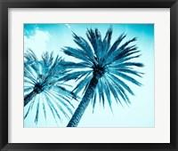 Framed Chic Palms