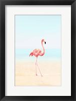 Framed Flamingo on the Beach II