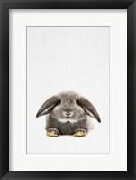 Framed Rabbit II