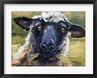 Framed Bless Ewe