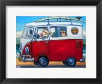Framed Sunglass Mutt