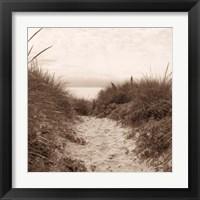 Framed Dune Path