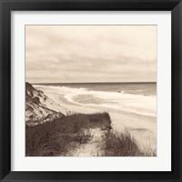 Framed Wellfleet Dune