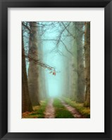 Framed Blue Mist
