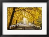 Framed Bridge to Fall III