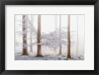 Framed Lishka