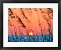 Framed Sun Dance