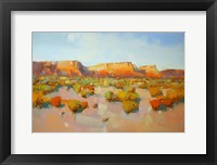 Framed Canyon View
