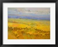 Framed Field of Yellow Flowers