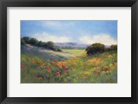Framed Poppies with a View