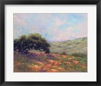 Framed Poppy Hill