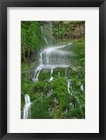 Framed Moss Waterfall