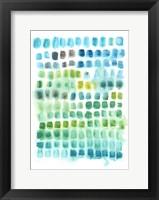 Framed Shades of Parakeet