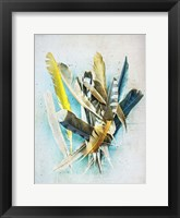Framed Feather Study No. 1