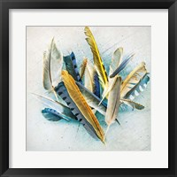 Framed Feather Study No. 3