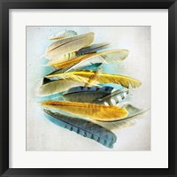 Framed Feather Study No. 4