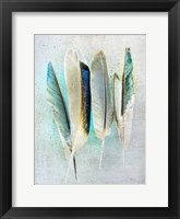 Framed Feathers Turquoise