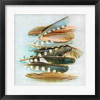 Framed Spotted Feather Study