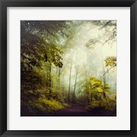 Framed Glorious Woods