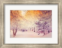 Framed Snowy Sunrise