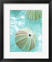 Framed Seaglass 4