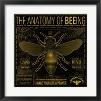 Framed Anatomy 0F Bee-Ing