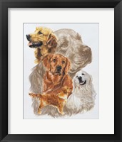 Framed Golden Retriever with Ghost Image
