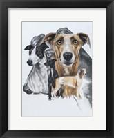 Framed Greyhound
