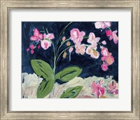 Framed Sweet Orchids