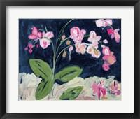 Framed Sweet Orchids