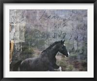 Framed Horse Exposures I