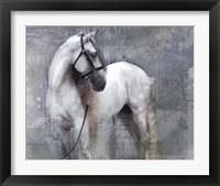 Framed Horse Exposures II