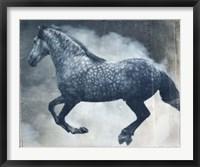 Framed Horse Exposures III