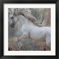 Framed Horse Exposures IV